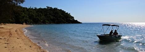 Orpheus Island Picnic